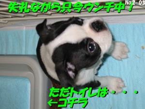 f0012659_18274166.jpg