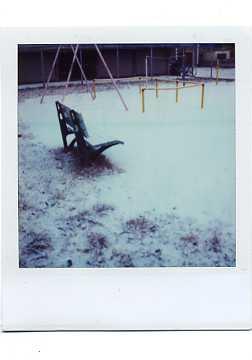 雪の絨毯_e0059605_2215597.jpg