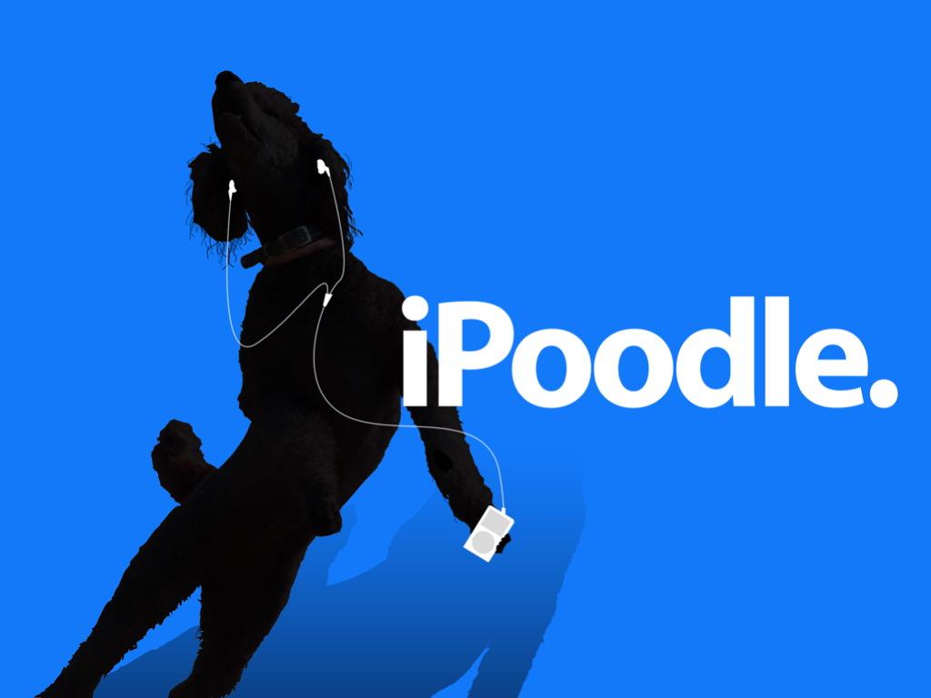 最近ipod見かけるよね!_d0052419_3523563.jpg