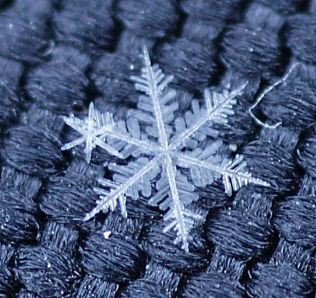 なんと今回は、雪の結晶を写真にとらえる事に、成功した!! 理科の教科書で... 雪の結晶をとらえ