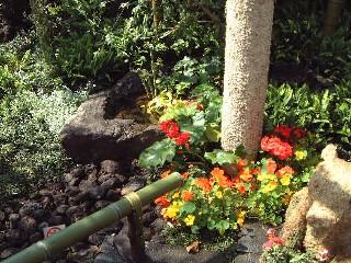 しずおか緑・花・祭「トピアリーとお友達」_f0017413_1023183.jpg
