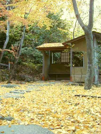 秋の三渓園_d0006718_23333174.jpg