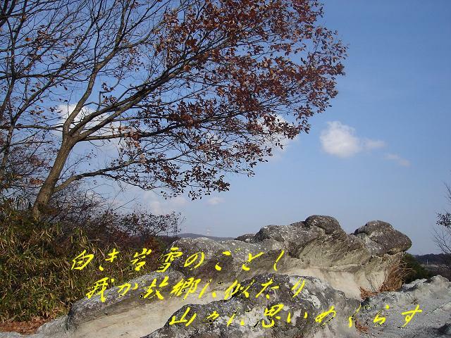 a0054440_15558.jpg