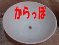 a0043939_1512534.jpg