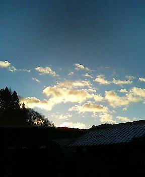 今日の川内村_d0027486_2312911.jpg