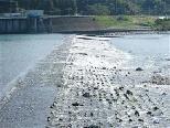歴史的河川遺構のある風景_a0051128_7131312.jpg