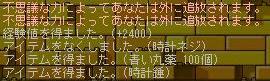 e0087434_8315137.jpg