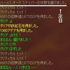 b0046950_635390.jpg