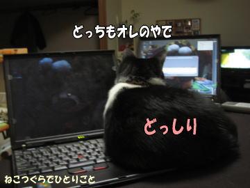 b0041182_1071412.jpg