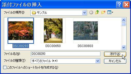 d0020290_1646133.jpg