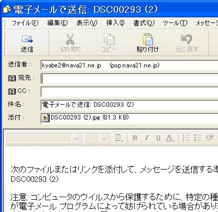 d0020290_1771457.jpg