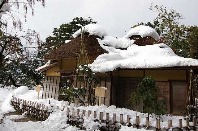 雪の兼六園_d0043136_20245984.jpg