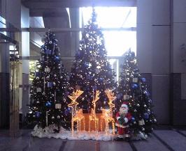 クリスマスだねぇぇ_e0000148_17525418.jpg