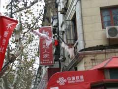 上海出張日記(2)_b0054727_533264.jpg
