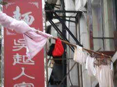 上海出張日記(2)_b0054727_5351021.jpg