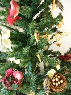 今年のクリスマスオーナメント_b0048834_11352275.jpg