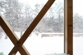 穏やかな降雪_e0054299_1145055.jpg