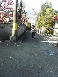 京都にて長崎を思う_d0066127_1362276.jpg