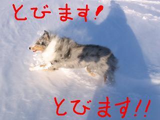 f0008706_034411.jpg