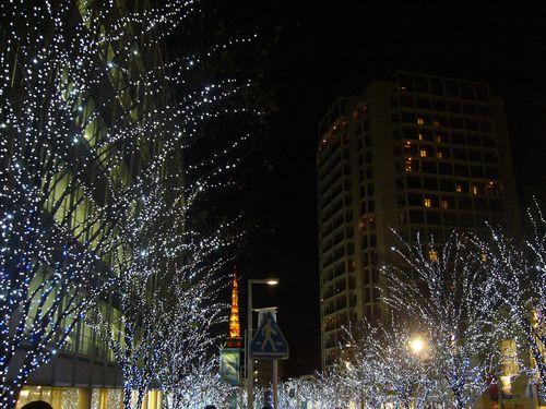 クリスマスも、すぐそこに_a0053662_24541.jpg