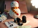 バクに出会えるお店【夢ぽのん】オープン_c0016212_1135155.jpg