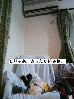 b0016423_23384610.jpg