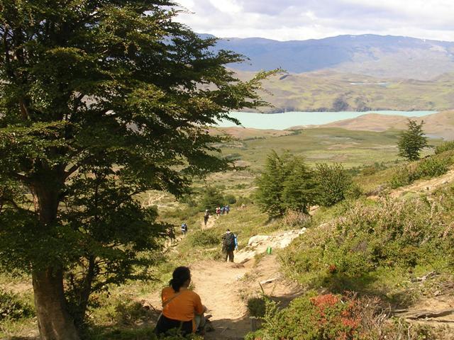 <水島夫妻のバイクの旅> パイネ自然国立公園へ_c0011649_21391170.jpg