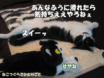 b0041182_028030.jpg