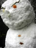 雪です。_c0052692_18463426.jpg