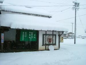 こんな大雪はじめてです。_d0005720_13492466.jpg