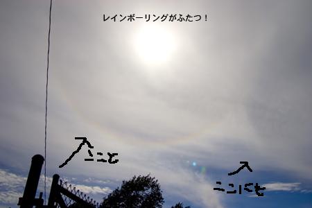 c0001980_21422240.jpg