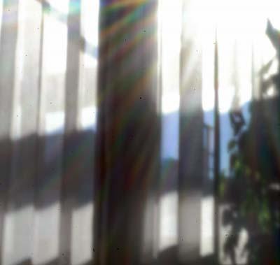 d0034980_2011398.jpg