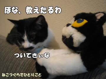 b0041182_001435.jpg
