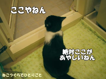 b0041182_004729.jpg