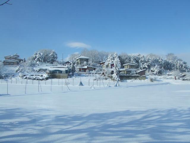 何十年かぶりの大雪が降った降った!_e0012815_1341558.jpg