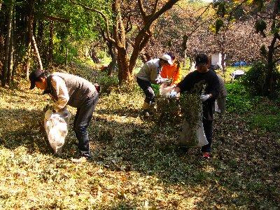 Log Jizo Festival【秋】焼き芋_c0038619_0105493.jpg