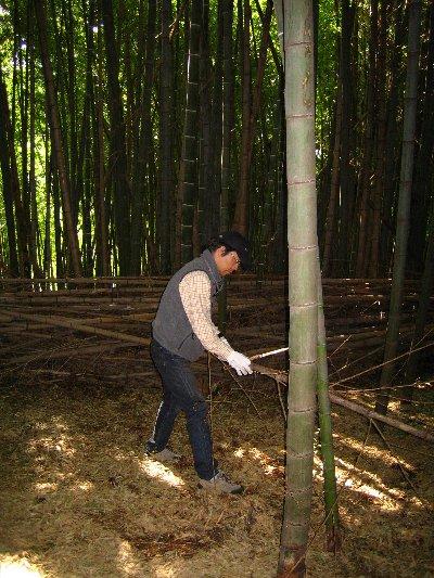 Log Jizo Festival【秋】焼き芋_c0038619_013171.jpg