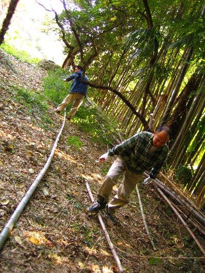 Log Jizo Festival【秋】焼き芋_c0038619_0211674.jpg