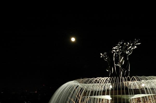 Winter Vista Illumination2 イルミ3 _c0027027_1638583.jpg