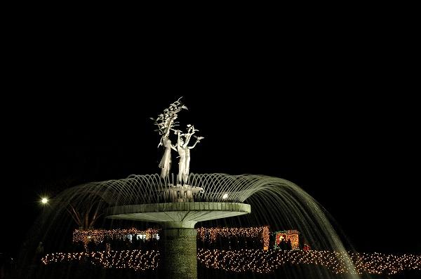 Winter Vista Illumination2 イルミ3 _c0027027_16385882.jpg