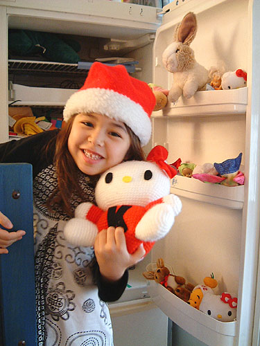 おもちゃ箱は冷蔵庫・・・_c0024345_1081628.jpg