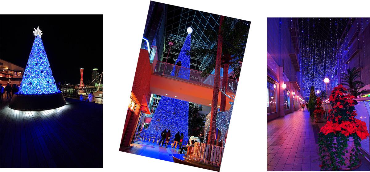 メリークリスマス_f0021869_23552328.jpg