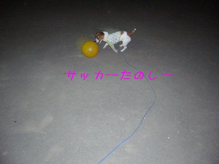 f0020777_143680.jpg