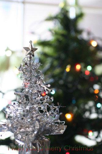 'Merry Christmas'   ささやかな・・・・_e0027083_1058888.jpg
