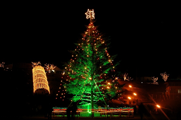 宮ケ瀬クリスマス イルミ4 _c0027027_17164367.jpg