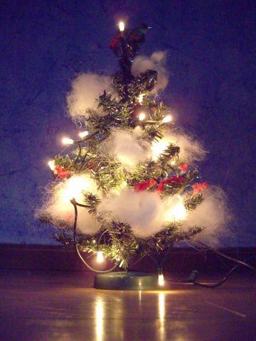 麻呂のクリスマス_c0062832_15361175.jpg