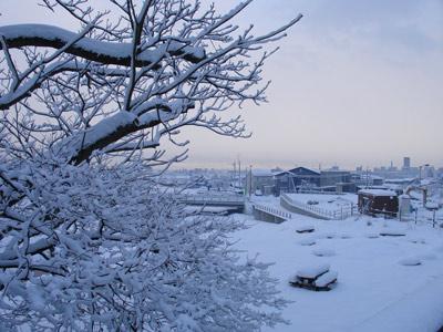 ホワイト・クリスマス_e0084756_9331542.jpg