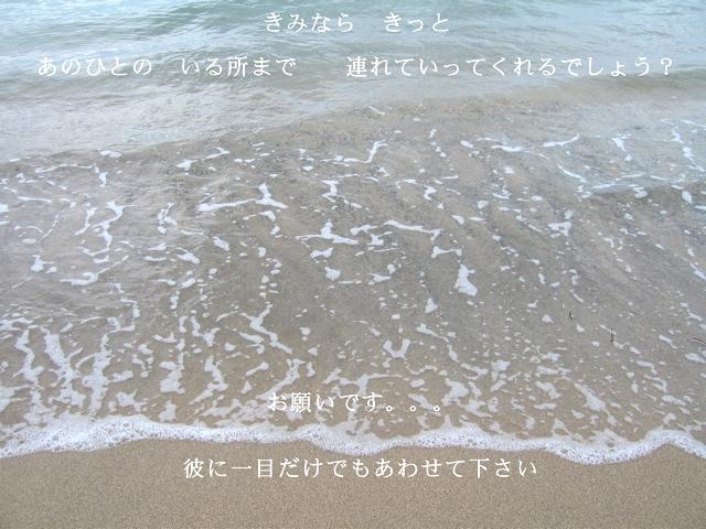 a0056488_7455268.jpg