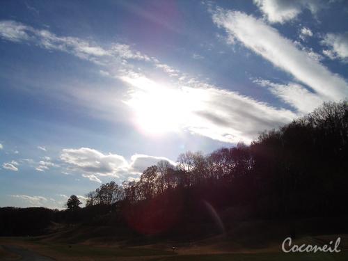 空が見たくてね~。_b0007234_15415754.jpg