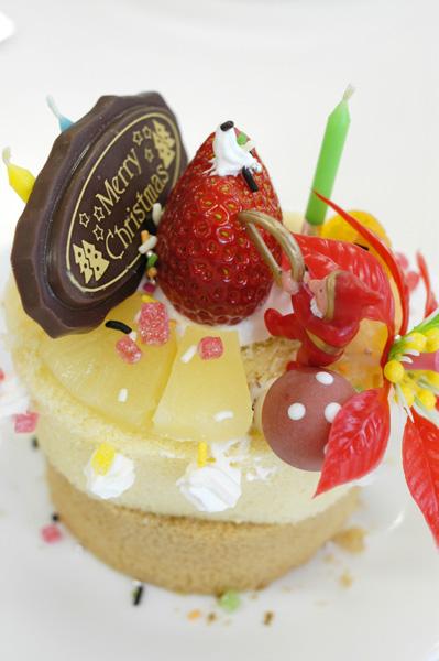 クリスマスケーキをつくる会_a0003650_11252159.jpg